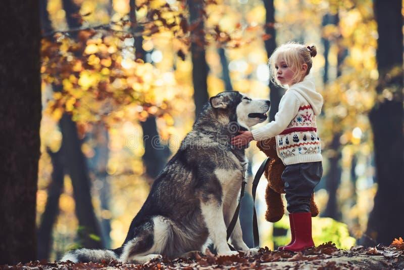 Activiteit en actieve rust Rode berijdende kap met wolf in sprookjehout Kinderjaren, spel en pret Kindspel met schor royalty-vrije stock foto's