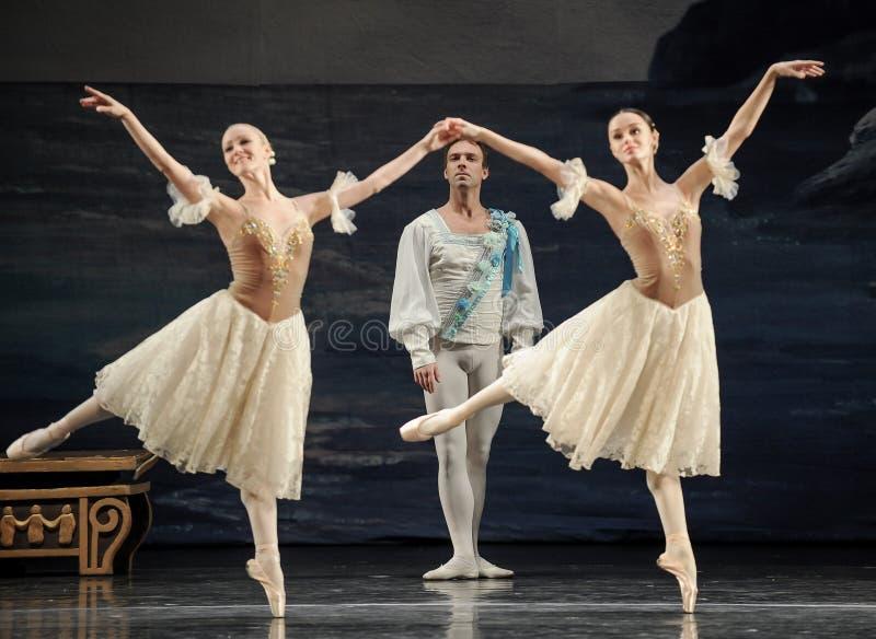 Actor del ballet foto de archivo