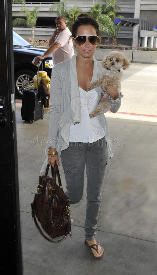 Download Actress Ashley Tisdale With Puppy At LAX Editorial Stock Photo - Image of girl, woman: 16509008