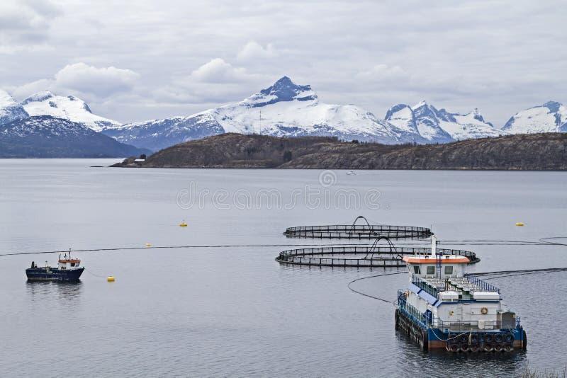 Acuacultura en Noruega foto de archivo