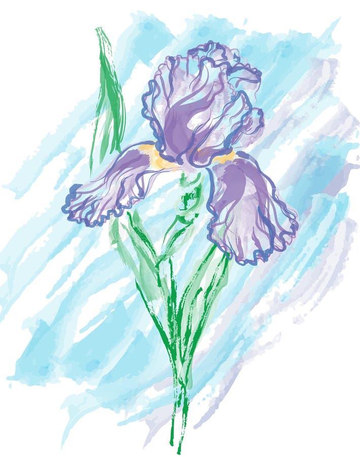 Acuarela libre illustration