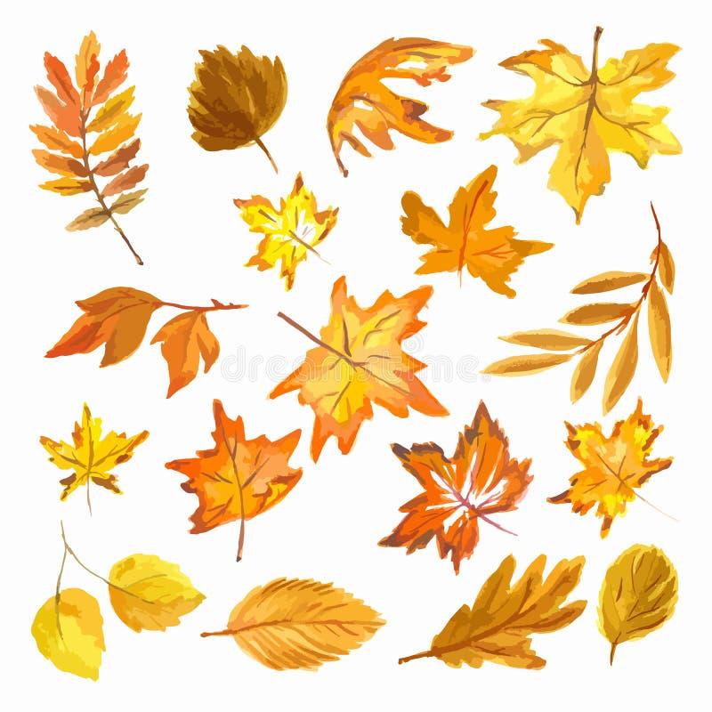 Acuarela Autumn Leaves Set libre illustration