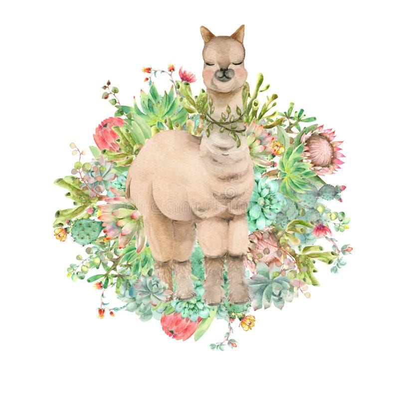 Acuarela de la bandera de la alpaca del desierto ilustración del vector