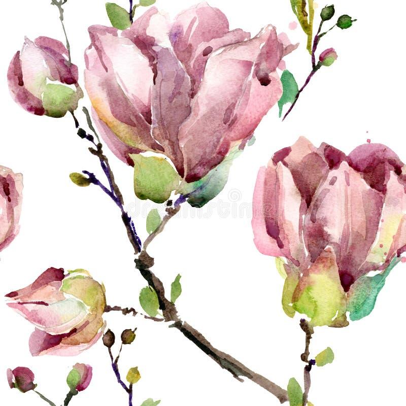 Acuarela de la rama de la magnolia stock de ilustración