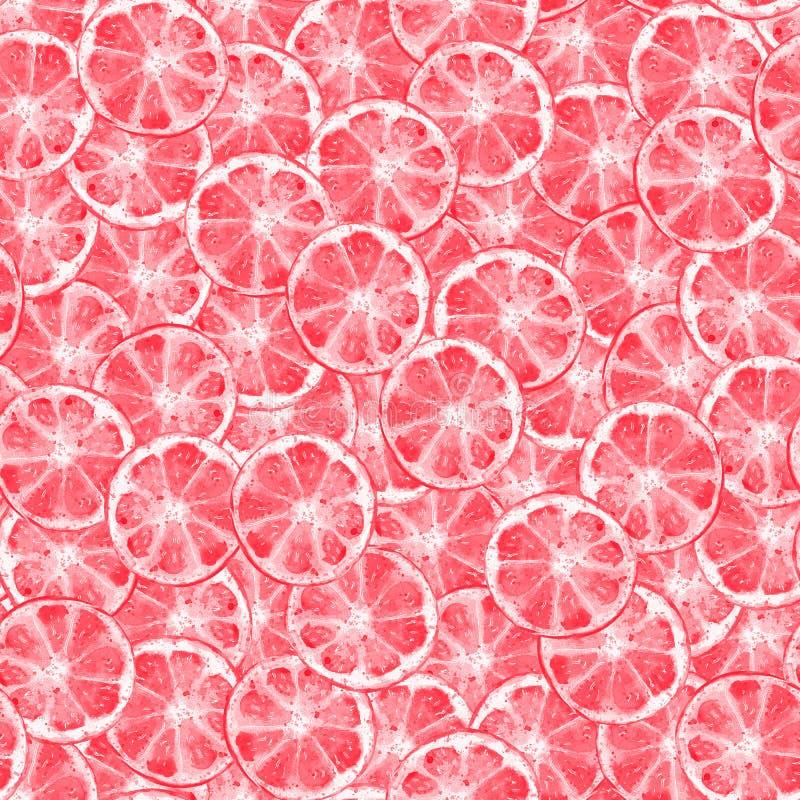 Acuarela de las rebanadas de la fruta cítrica del pomelo libre illustration