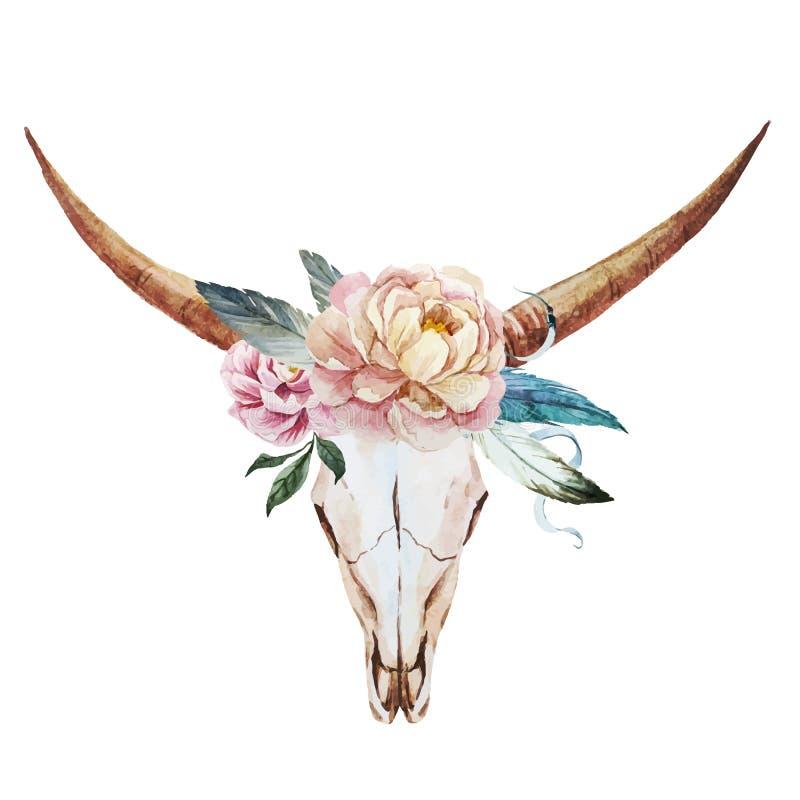 Acuarela del cráneo de Bull stock de ilustración