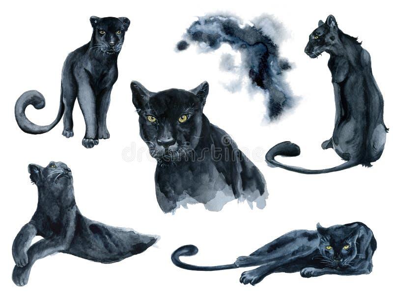 Acuarela fijada con la colección de los animales de las panteras negras stock de ilustración