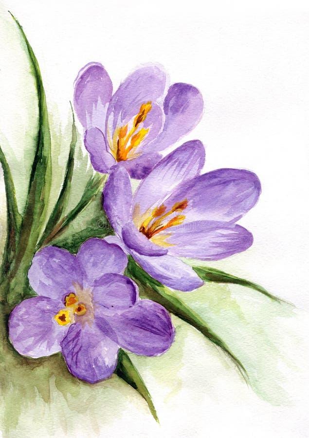 Acuarela - flores del resorte ilustración del vector