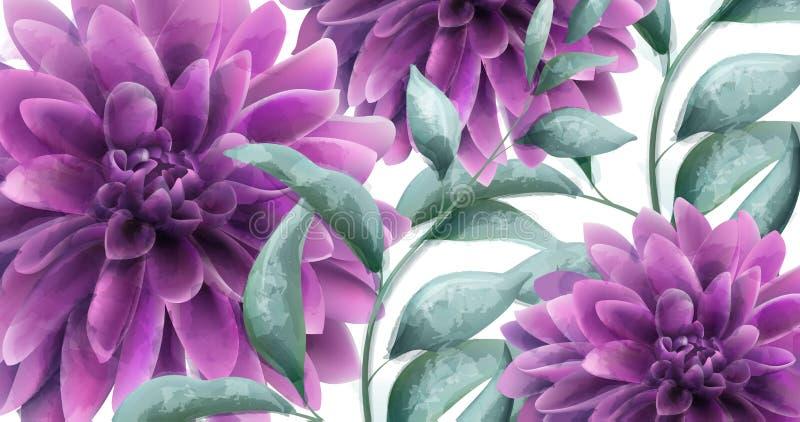 Acuarela púrpura del vector de la bandera de las flores de la dalia Estilos hermosos de Provence del vintage del poater ilustración del vector