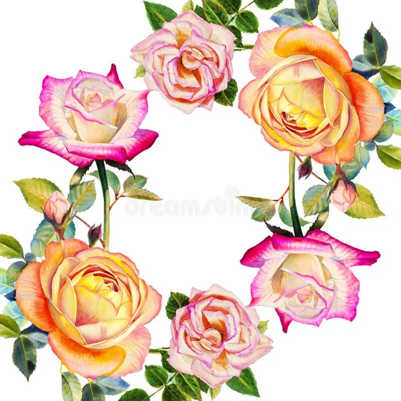Acuarela que pinta la flor colorida de la postal feliz realista original de rosas stock de ilustración