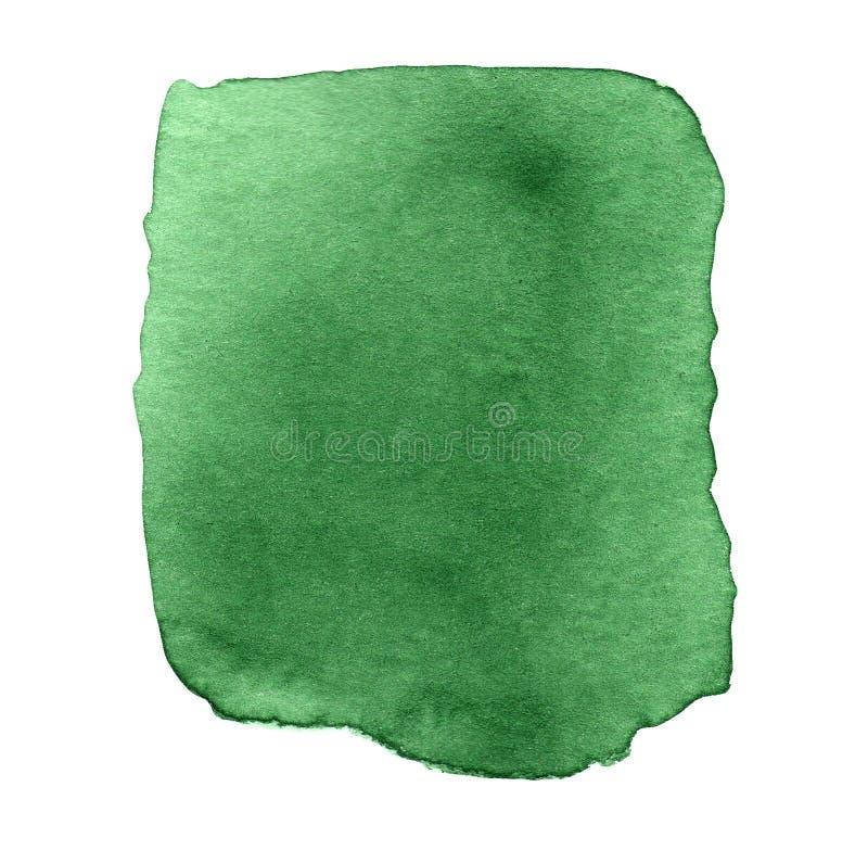 Acuarela verde abstracta en el fondo blanco Mano drenada ilustración del vector