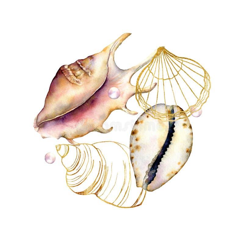 Acuarela y línea composición de las cáscaras del arte Elementos subacuáticos pintados a mano aislados en el fondo blanco acu?tico stock de ilustración