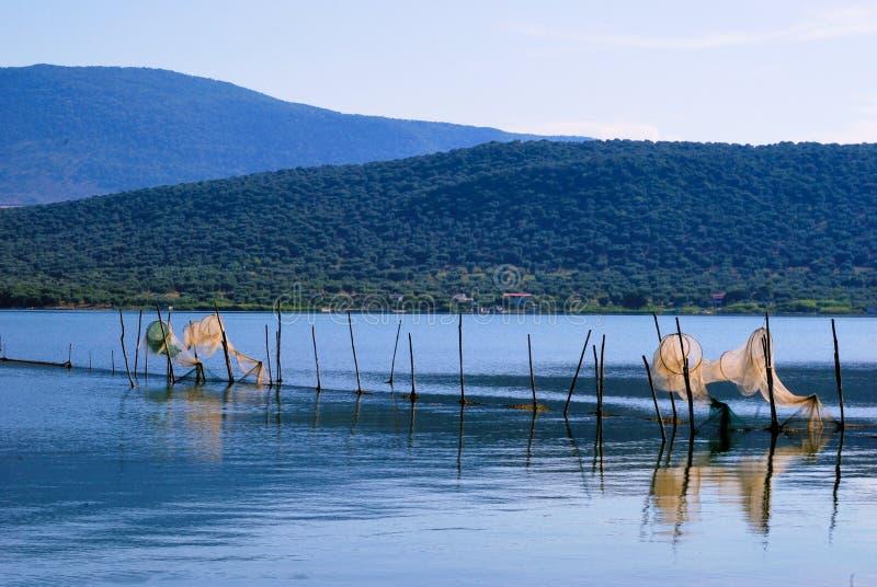 Acuicultura de Varano del lago imagenes de archivo