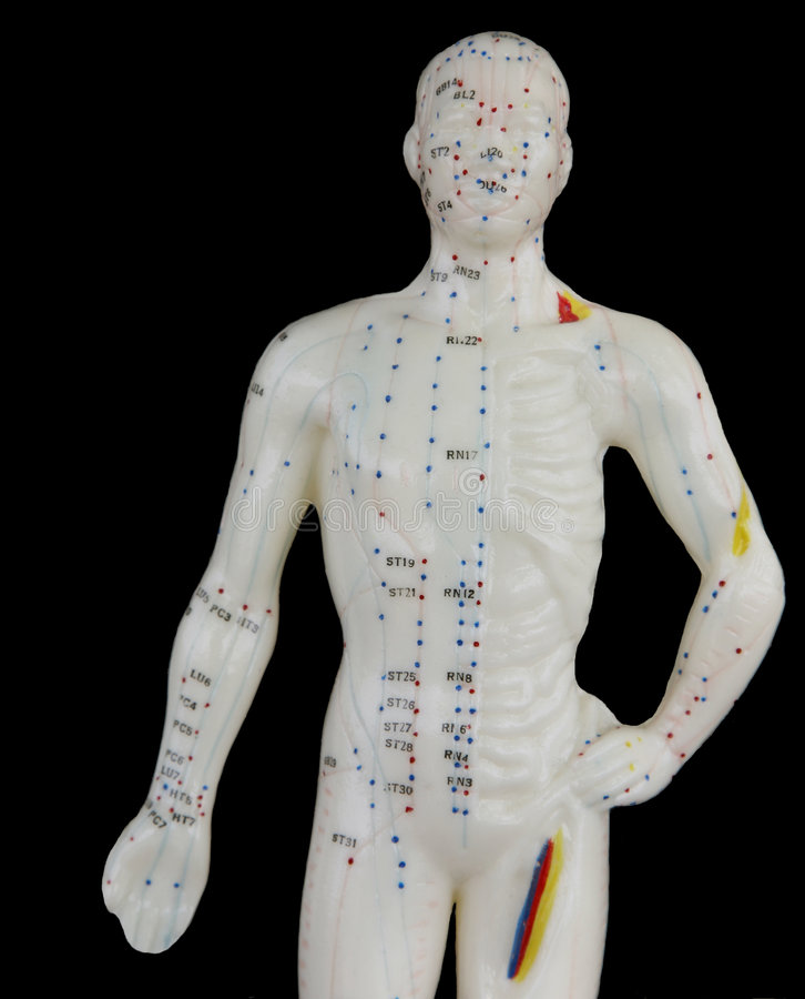 Acupuncture Man. Point model of acupuncture points on the human body. Male figure royalty free stock photography