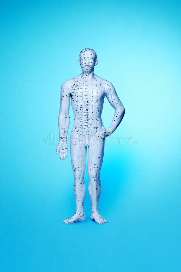 Free Acupuncture Man Meridian Points Stock Image - 3222331