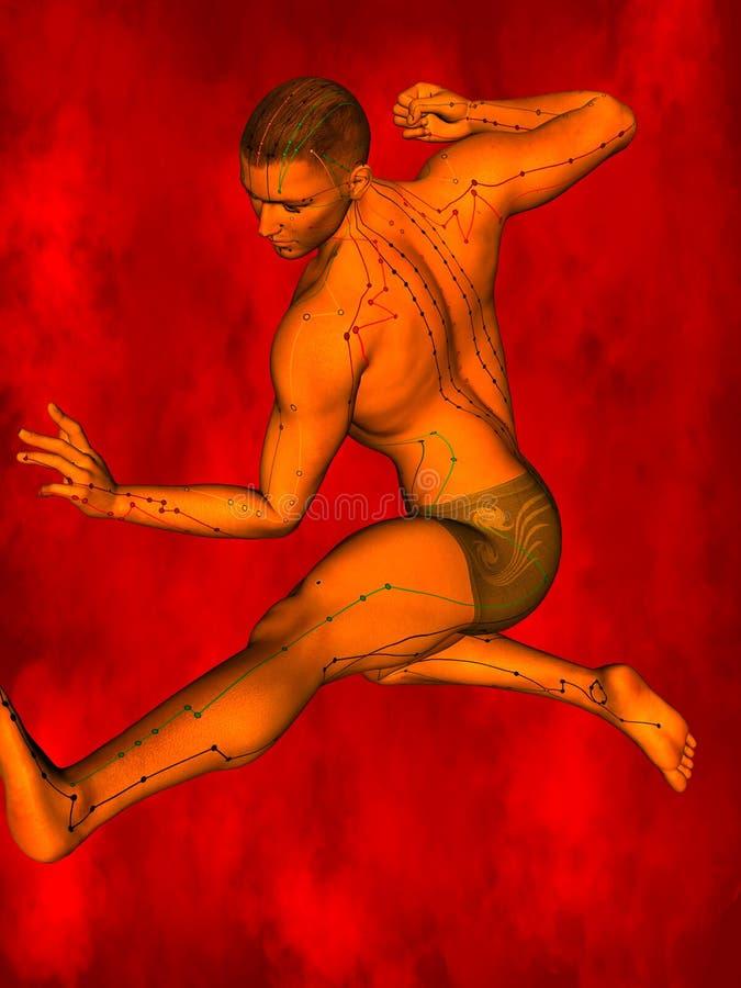 Acupuncture model, 3D illustration stock photos