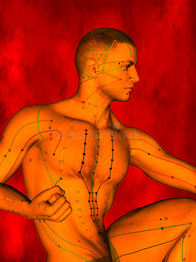 Acupuncture model, 3D illustration stock image
