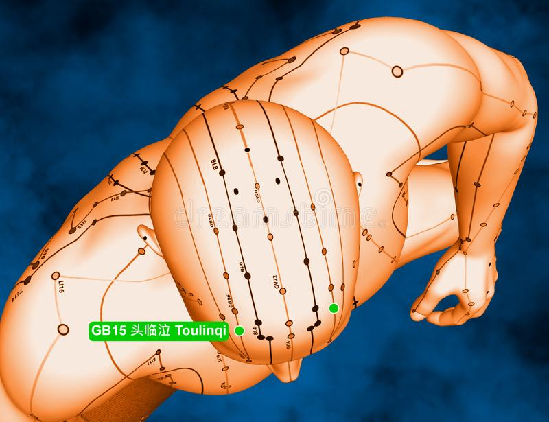 Acupuncture Point GB15 Toulinqi, 3D Illustration, Blue Background stock photo