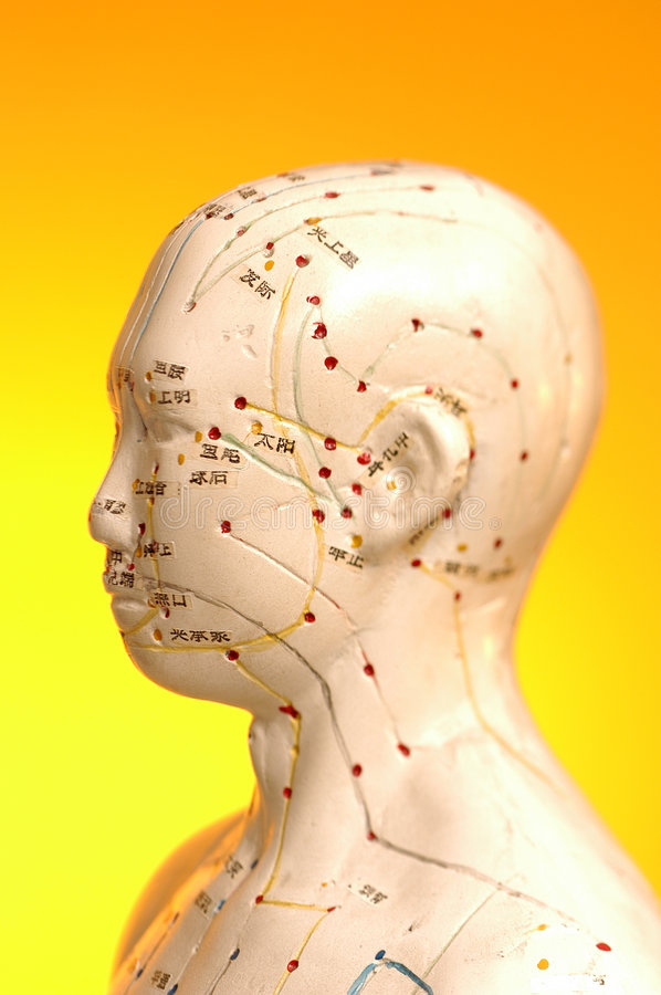 Free Acupuncture Points And Meridians Stock Photography - 4300772