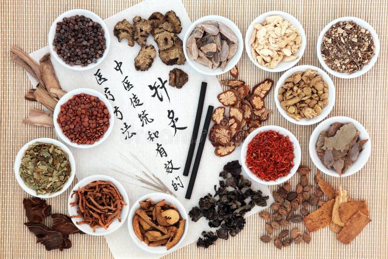 Acupunctuur Chinese Geneeskunde royalty-vrije stock fotografie