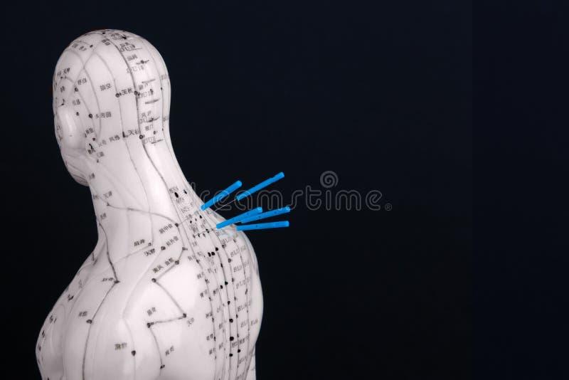 Acupunctuurmodel met naalden royalty-vrije stock afbeelding
