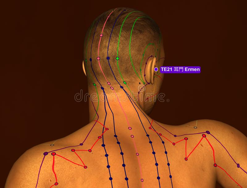 Acupunctuurpunt TE21 Ermen, 3D Illustratie, Bruine Achtergrond royalty-vrije illustratie