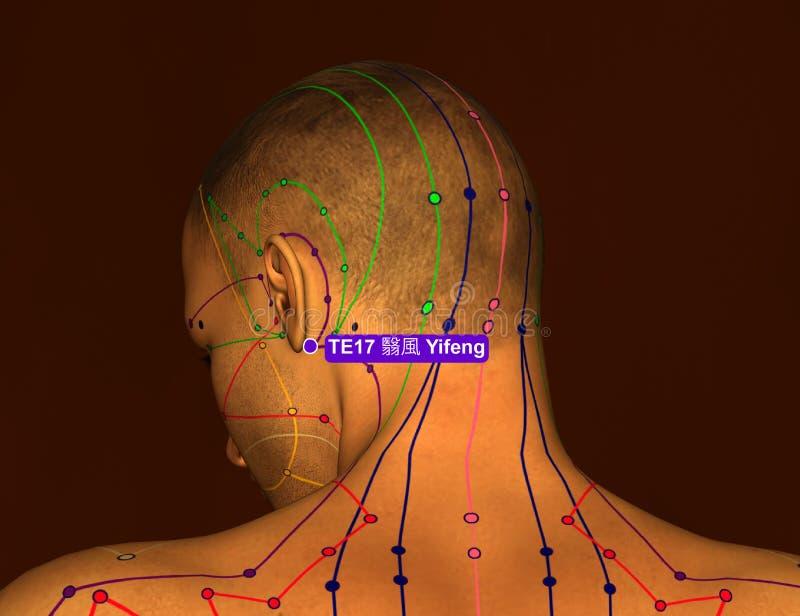 Acupunctuurpunt TE17 Yifeng, 3D Illustratie, Bruine Achtergrond vector illustratie