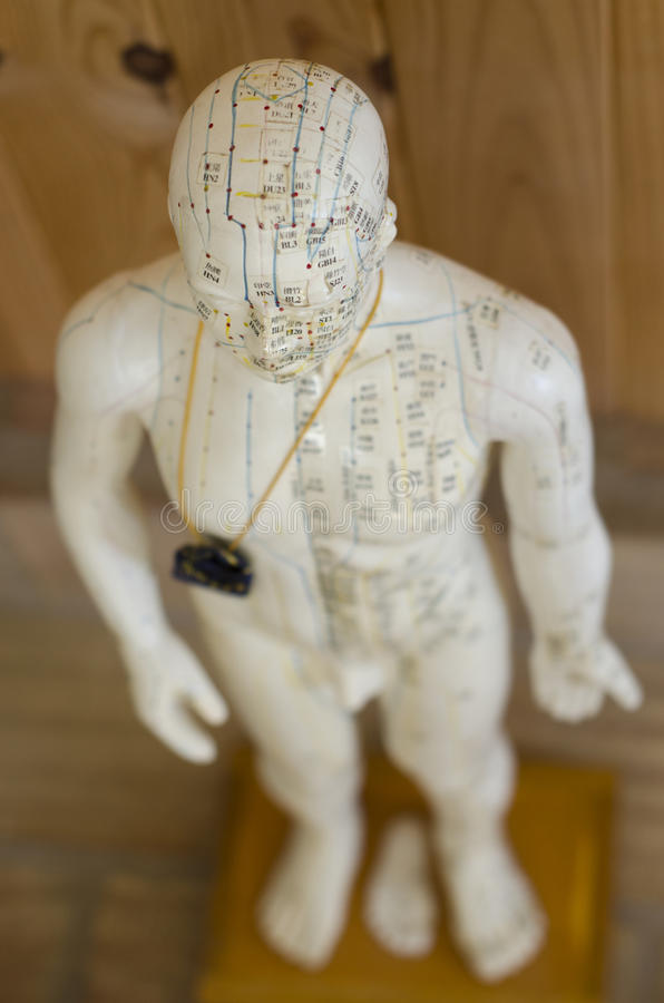 Acupunctuurstandbeeld die meridianen tonen stock fotografie