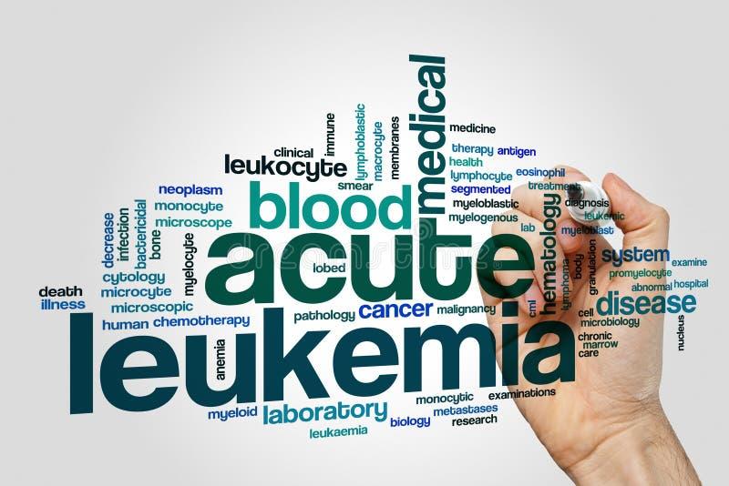 Acute leukemia word cloud. Concept royalty free stock photography