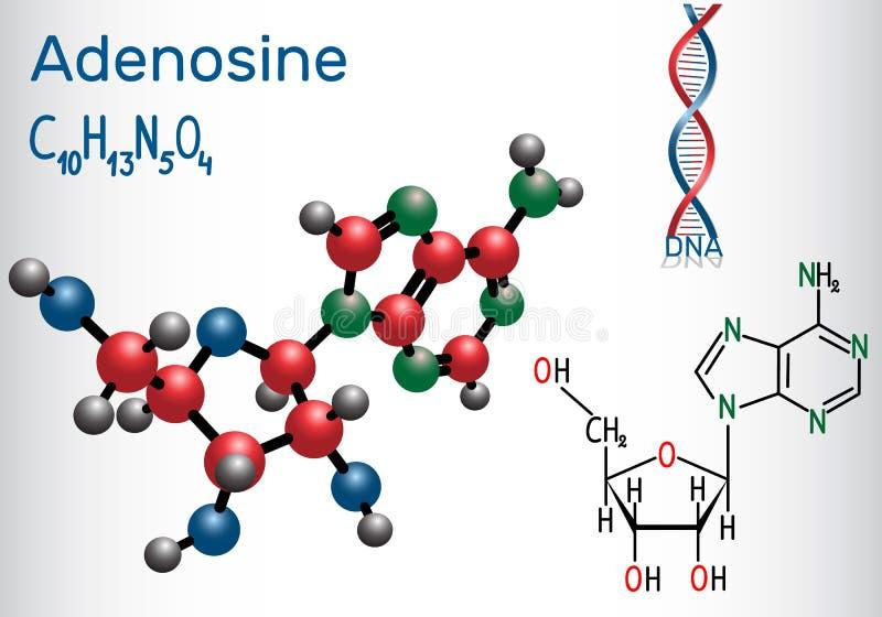 Adénosine - la molécule de nucléoside de purine, fait partie part importante de triphosphate d'adénosine illustration libre de droits