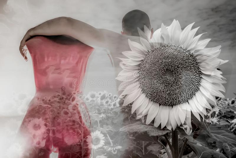 Adam and Eve revisited, surrealistic couple between dream and nightmare. Naked man with dummy in sunflowers ocean, post apocalyptic scene and background, love royalty free stock images
