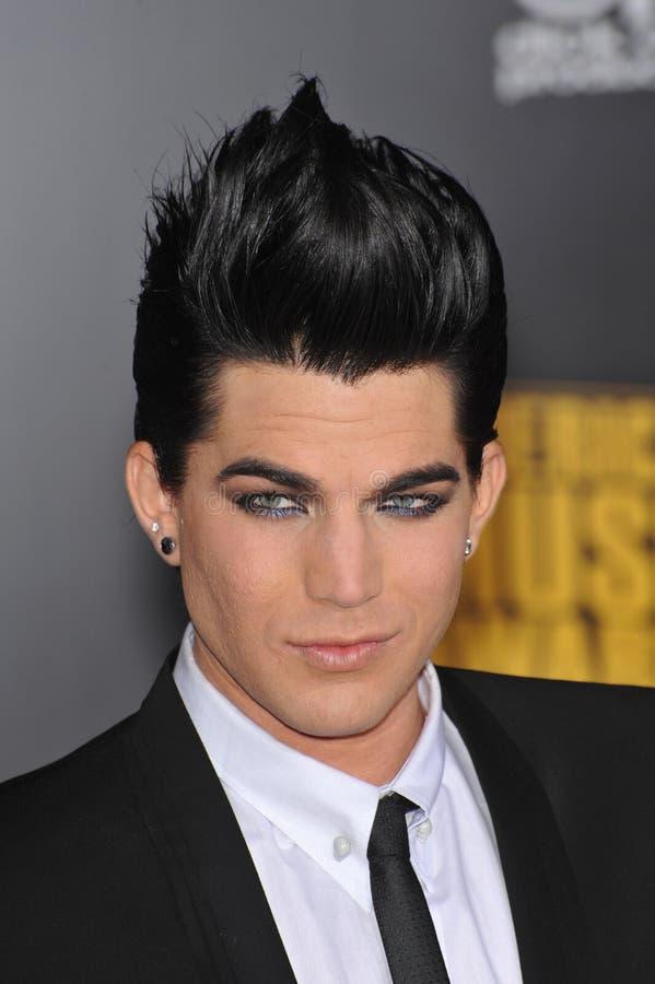 Adam Lambert royalty-vrije stock foto