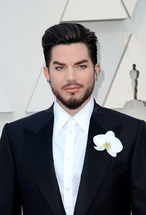 Adam Lambert stock photography