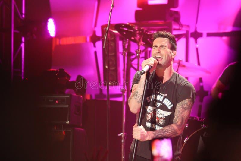 Adam Levine in concert stock photos