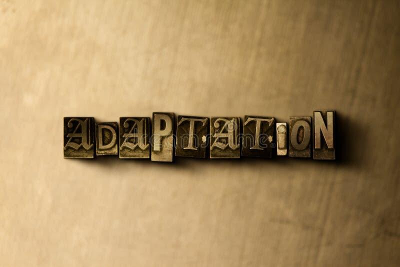 ADAPTACJA - zakończenie grungy rocznik typeset słowo na metalu tle ilustracji