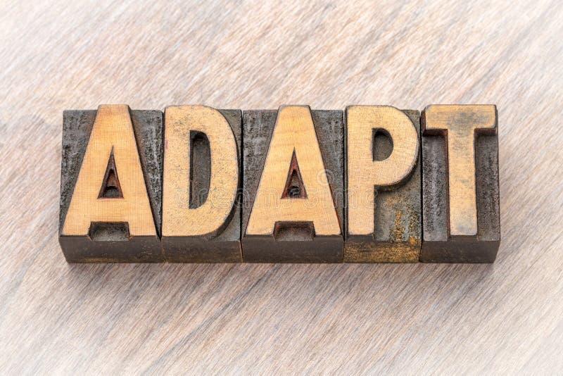 Adaptez - l'asbtract de mot dans le type en bois photographie stock