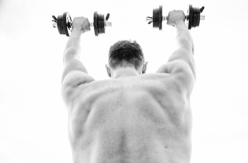 adaptez votre corps et perdez le poids Fuselage sportif Gymnase d'halt?re ?quipement de forme physique et de sport halt?rophilie  image libre de droits