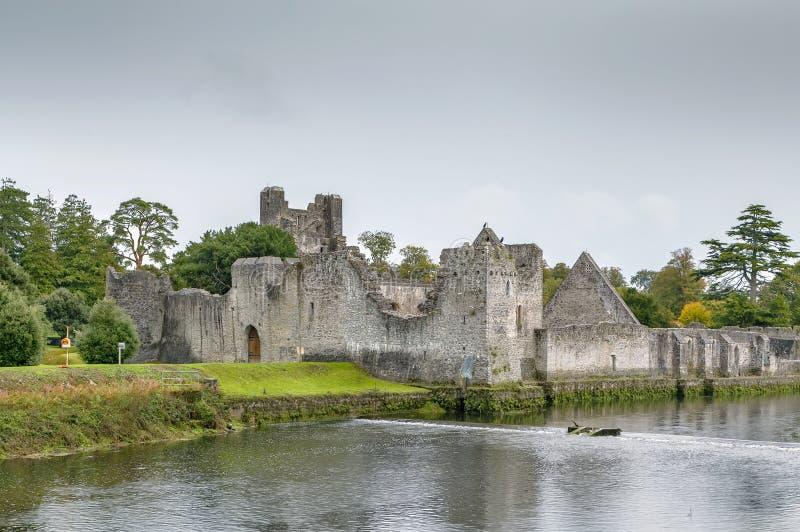Adare Desmond kasztel, Irlandia zdjęcie royalty free