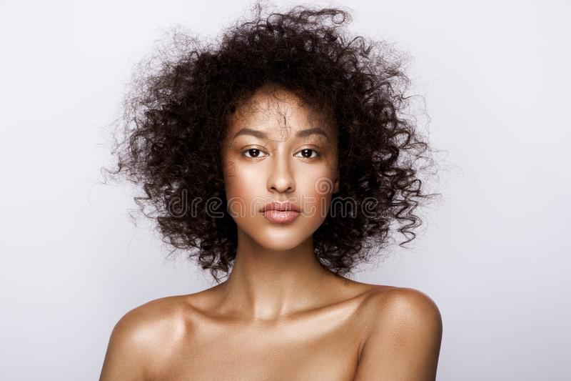 Adatti il ritratto dello studio di bella donna afroamericana con la pelle d'ardore liscia perfetta del mulatto, componga fotografia stock libera da diritti