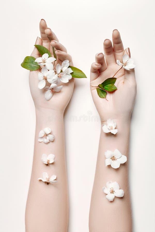 Adatti la donna della mano di arte nell'ora legale ed i fiori sulla sua mano con trucco di contrapposizione luminoso Ragazze crea immagini stock libere da diritti