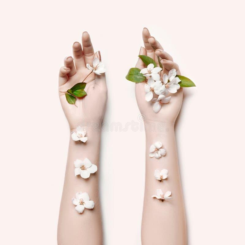 Adatti la donna della mano di arte nell'ora legale ed i fiori sulla sua mano con trucco di contrapposizione luminoso Ragazze crea fotografia stock
