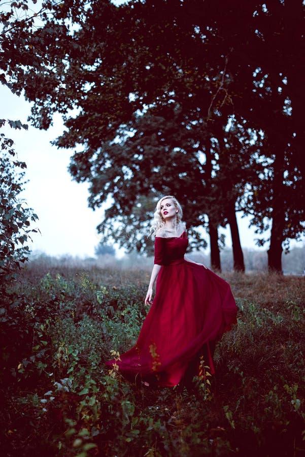 Adatti la giovane donna bionda splendida in bello vestito rosso in un'atmosfera di magia della foresta di fiaba Retouched che ton fotografie stock