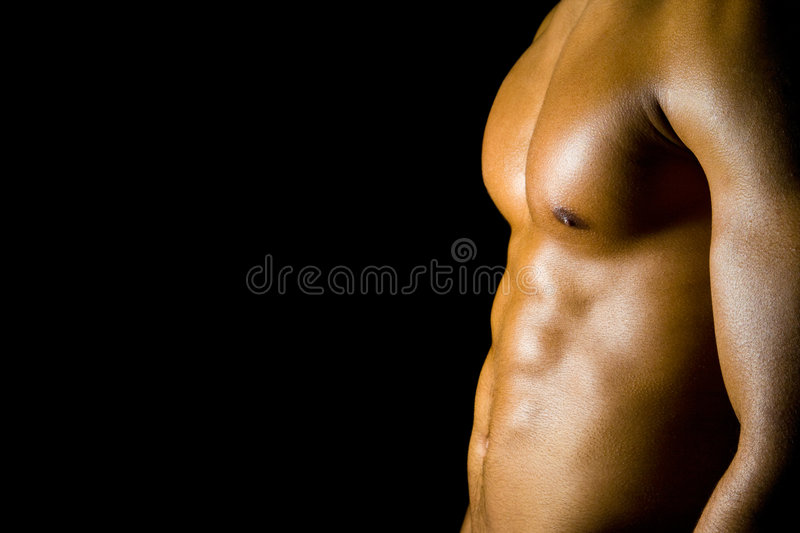 Adbominal Muscles Royalty Free Stock Images