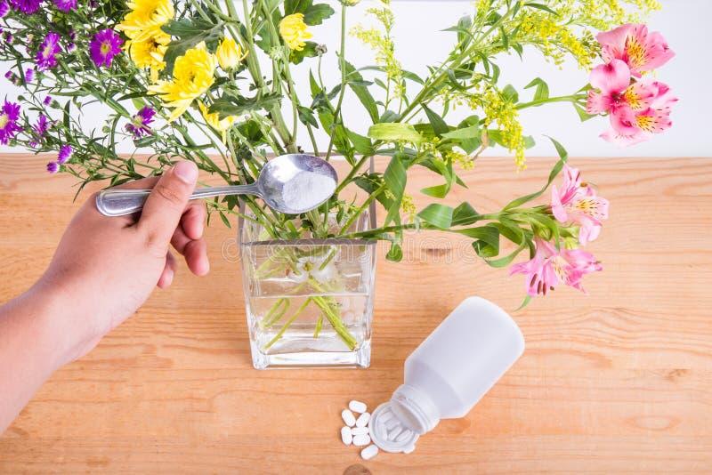 Add erdete Acetylsalicylsäuretablette in Vase halten Blumen lizenzfreie stockfotografie
