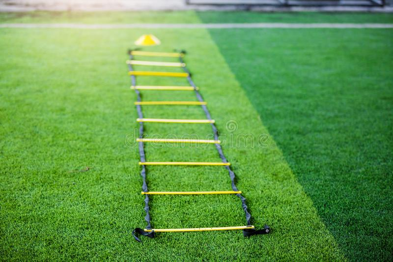 Adder drills on green artificial turf for soccer training. Ladder drills on green artificial turf for soccer training. Ladder drills exercises for football or royalty free stock photo