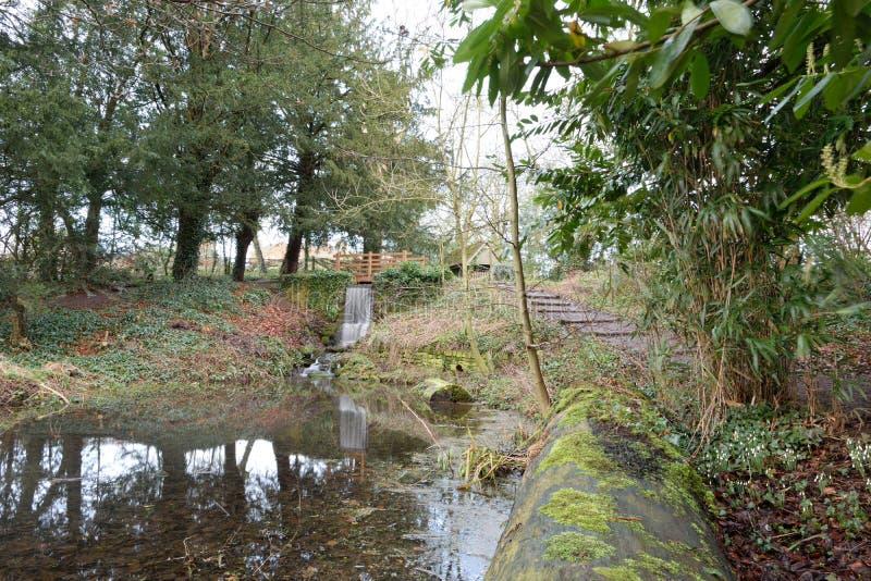 Adderbury Lakes royalty free stock photo