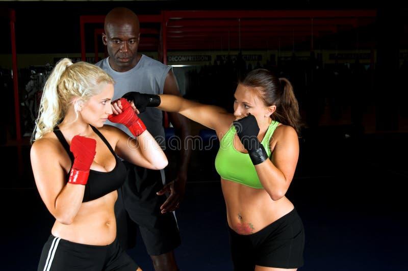 Addestramento dei combattenti della ragazza immagine stock