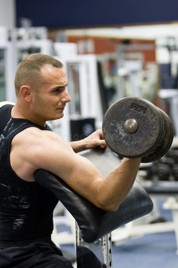 Addestramento di ginnastica di forma fisica con i pesi immagini stock