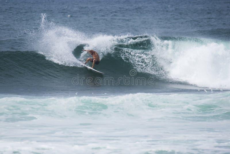 Addestramento praticante il surfing dell'atleta immagini stock