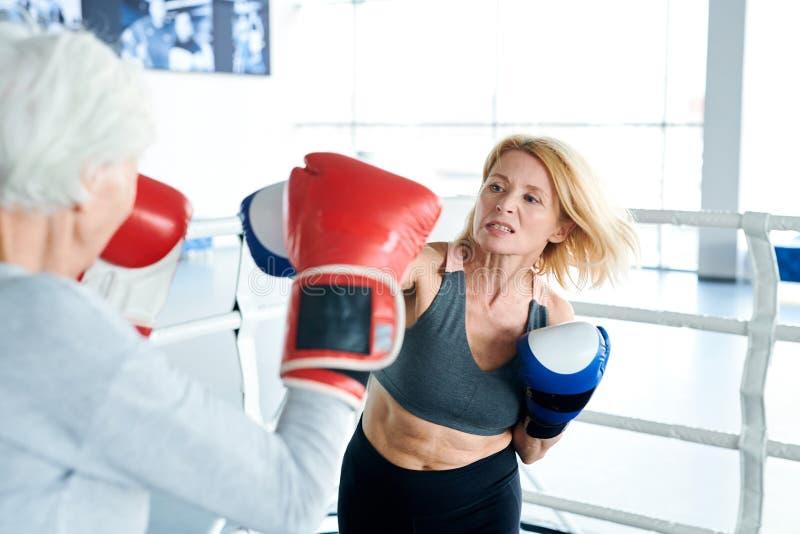 Addestramento sul ring immagini stock libere da diritti